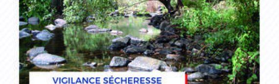 Sècheresse en Ille-et-Vilaine : retour à l'état de vigilance